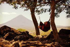 man laying on hammock in wilderness