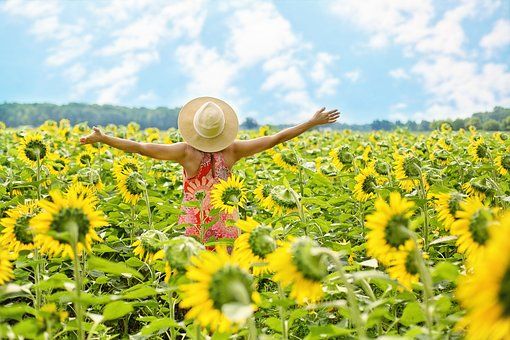 girl raises arms in a field of sunflowers